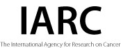 The International Agency for Research on Cancer (IARC)